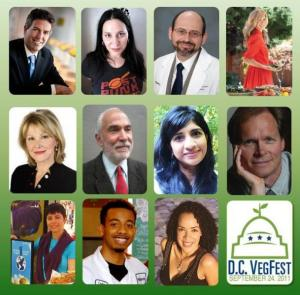 DCVF Speakers Schedule Promo Pic 2011